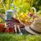 Благоприятные дни садовода и огородника на март 2021